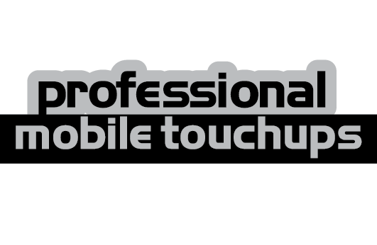 Professional Mobile Touchups  Logo